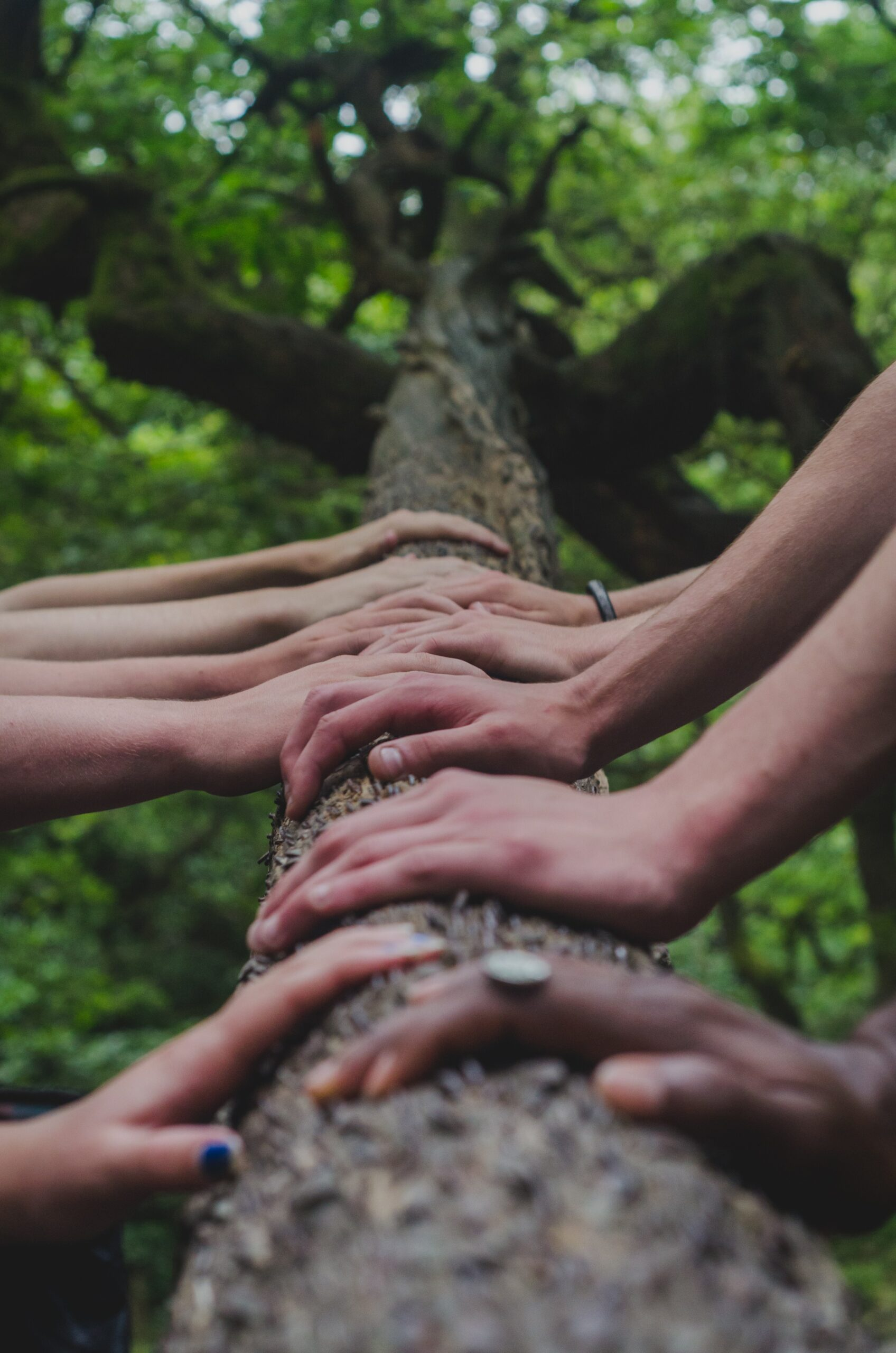 179-The Power of Peer Support and Lived Experience